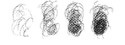 circulism hatching